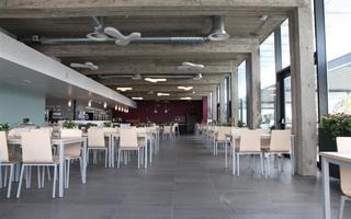 Taverne Zilverbos